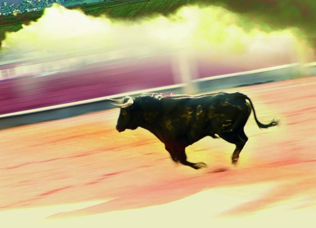 Flip cropped_war_matador image